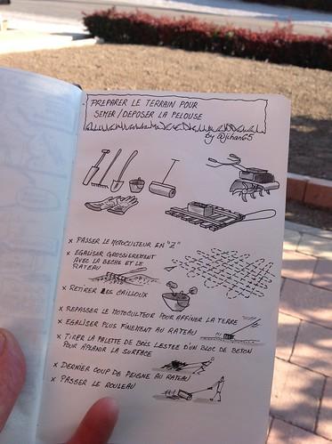 La préparation du terrain pour une nouvelle pelouse en #sketchnotes