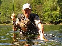 Grayling & Mixmaster (crnabambula) Tags: lipljen grayling flyfishing fliegenfischen flyfishingmix drina guide mušičarenje dry fly