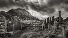 Gate to Happiness (Einir Wyn Leigh) Tags: blackandwhite mono mountain gate love happy nature raw rugged storm rain slate wall outdoor april spring light contrast black white grey wales cymru snowdonia
