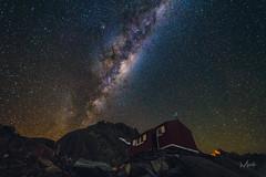 My Happy Place. (Mikey Mack) Tags: westlandnationalpark westcoast newzealand nz