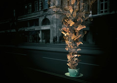 Cupful of butterflies (V Photography and Art) Tags: surreal london illusion cupofbutterflies butterflies gold buildings reflection