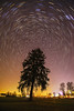 moving sky (Urs Walesch) Tags: startrails sky stars tree light allgäu skyscrape lightpollution astrometrydotnet:id=nova2053651 astrometrydotnet:status=failed