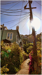 San Francisco Alley (T. Peck) Tags: sanfrancisco california ca summer usa sun west cali america sfo sommer sony roadtrip amerika westcoast sonne kalifornien nex westkste topazlabs nex5