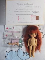 Will travel to her new home soon (Smilga2008) Tags: yellow tan sunny latidoll lati tcob