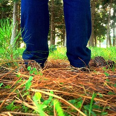 runaway (DENNYS LOPES #G.) Tags: wood nature forest square friend shoes do pants live squareformat behind arvores floresta rs runway rvore riograndedosul sul osorio riogrande osrio haras osriors passinhos iphoneography instagramapp uploaded:by=instagram foursquare:venue=5027ecbde4b00bbc7a9e5619 passinhosrs