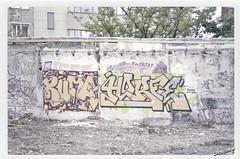 Kuma (by Horfé) / Horfé (by Kuma) (Philippe Basset) Tags: urban paris graffiti fuji mju decay olympus analogue s400 pal argentique kf kuma horfé horphe horfee clickclaker