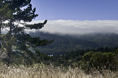 Fog Over Crystal Springs (Greatest Paka Photography) Tags: weather northerncalifornia fog reservoir watershed sanmateo crystalsprings