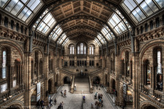 Natural History Museum London HDR (Scott Cartwright Photography) Tags: london architecture canon naturalhistorymuseum canoneos hdr highdynamicrange professionalphotographer canoncameras canon7d scottcartwright shrewsburyphotographer shropshirephotographer shrewburyfreelancephotographer scottcartwrightphotography shropshirefreelancephotographer shrewsburyprofessionalphotographer
