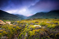 Garrapata (Eddie 11uisma) Tags: california park beach fog landscape coast landscapes monterey glow state central carmel eddie garrapata lluisma