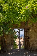 The fortress (PennyMurray) Tags: trip travel trees italy travelling canon rebel italia tuscany sangimignano toscana fortress rocca lightroom polarizingfilter polarizzatore assassinscreed rebelt3i