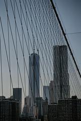 Freedom Tower (Joseph Austin) Tags: new newyorkcity urban newyork skyline architecture worldtradecenter cables brooklynbridge suspended suspensionbridge modernarchitecture freedomtower bridgecables gehrynewyork