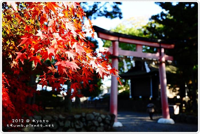 上賀茂神社 (4).jpg