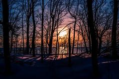 Wintertime sunset (The Spider Pig) Tags: winter sunset snow lakemichigan lakeshore