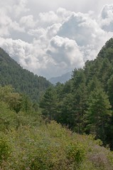 Hills near Arsguel (Stuart Madeley) Tags: travel trees sky mountains spain pentax catalonia cerdanya k7 arsequel