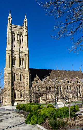 trees sky plants building architecture cathedral southaustralia austraila stfrancisxavierscathedral adelailde