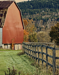 0007487 (Shakies Buddy) Tags: old trees canada fall field barn rural fence colours farm nb 200views weathered allrightsreserved nbphoto