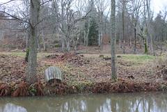 Blek natur (auzgos) Tags: natur å vatten träd eka blek roddbåt fotosondag fs131117 färglöst