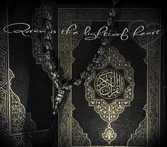 Quran .. القرآن (© Ahmed rabie) Tags: islam religion quran القرآن الكريم