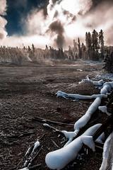 Yellowstone-13