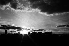 Goodbye for another day (maplenut) Tags: park city bw sun toronto silhouette clouds riverside flare 100asa spacing blogto kodaktmax rollei35se torontoist