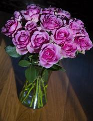 Roses in the light (WilliamND4) Tags: roses vase flowers light nikon d810