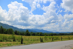 Cade's Cove Valley (JessVillanueva92) Tags: smoky mountains cades cove tennessee sevierville gatlinburg national forest park valley
