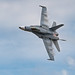 2017 TICO Warbird Airshow - F/A-18 Hornet