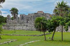 IMG_0357 (davebentleyphotography) Tags: 2016 mayancity templeofthefrescoes templodelaspinturas mayan mayanruins mexico rivieramaya tourism tourist travel tulum