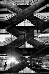 The Real Mr. X (N A Y E E M) Tags: guest escalator evening night glass panel building reflection silhouette radissonblu hotel chittagong bangladesh light availablelight vertical dedication ataullah drhata adnan handheld