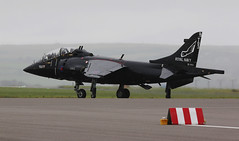 Black is Black - we want our Air Day back! (crusader752) Tags: rn royalnavy faa fleetairarm sfdo schoolofflightdeckoperations bae hawkersiddeley harrier t8 zb603ddt03 rnasculdrose airday 2016 jet vtol stol trainer
