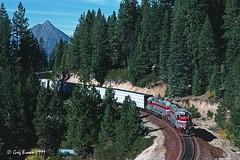 Backwards at Big Canyon (C.P. Kirkie) Tags: mccloudrailway mountshasta siskiyoucounty shastacascadewonderland shortlinerailroad mccloud blackbutte trains railroads emd sd38 forest forestproducts