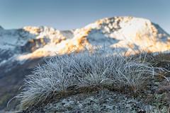 Frozen light (cesco.pb) Tags: simplonpass switzerland svizzera alps alpi fletschhorn montagna mountains canon canoneos60d tamronsp1750mmf28xrdiiivcld alba dawn