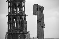 Notre Dame (Dusty J) Tags: paris france europe nikon d750 nikkor vacation art light dustin gaffk gaffke dustingaffke dustyj
