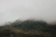 Sierra mágica de Puebla (lejardindevenus) Tags: zapotitlándemendez puebla niebla foggylandscape méxico méxicomágico visitmexico exploremexico