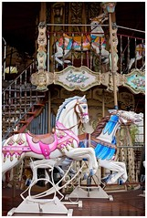 Montmartre (veronicajwilliams photography) Tags: veronicajwilliamsphotography veronicajwilliams france paris europe carousel merrygoround monmartre canon canon5dmarkii canon2470mm canon2470mmf28l travelphotography travel travelling traveling colour horse fun