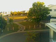 2017-04-28T07:00:04.454073+10:00 (growtreesgrow) Tags: trees timelapse raspberrypi