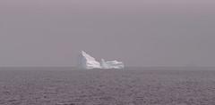 apr7 2017 31 (Delena Jane) Tags: delenajane icebergs ferryland newfoundland ngc newfoundlandcoastline canada macro 100mm pentaxart