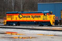 Chessie Reborn (Wheelnrail) Tags: chessie system co for progress kitten csx huntington locomotive ge b307 rail road railroad train trains