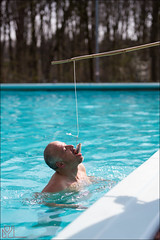 2-7456 (Ijsberen-Boom) Tags: boom ijsberen kzcyboom doop swim zwemclub zwemmen vlaanderen belgium