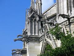 Gargouilles, Notre-Dame de Paris (michele 69600) Tags: paris notredamedeparis france cathédrale gargouille architecture