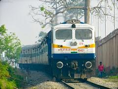 IZN Beast Curving and Moving on a Small Gradient | IZN WDP-4D #40421 - Indian Railways !!! (Anubhav_Kashyap) Tags: 40421 izn izatnagar wdp4d indianrailways indiatravel indianrailfanclubassociation incredibleindia india indialove anubhavkashyap railroad railways irfca iri ir trainspotting transport travellingphotography traveller passengertrain diesellocomotiveworks dlw electromotivediesel emd worldwidetrains trainaward