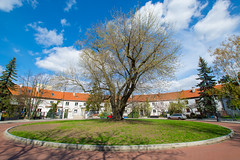 Plac Słoneczny (PiotrTrojanowski) Tags: warsaw zoliborz plac sloneczny quare architecture poland city housing roundabout street spring