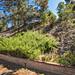 10039 Wildlife Rd San Diego CA-MLS_Size-030-29-030-1280x960-72dpi