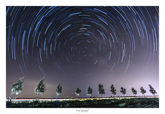 """""""Look up at the stars and not down at your feet."""" (iosif.michael) Tags: sony a7 astrophotography stars startrails polaris sky light trees cyprus night nightphotography"""
