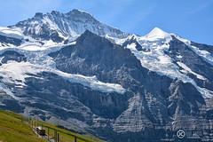 Inmenso. (JCarlos.) Tags: montaña suiza tren cremallera mountain lovely landscape nieve alta junfrau 3000 d7100