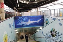 036A0298 (zet11) Tags: tokyoprefecture metro stacja