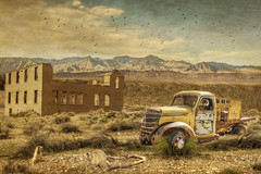 'Critters' (brian_stoddart) Tags: texture old animals mountains truck sky derelict desert