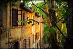*WHU (WangDingyi) Tags: zmbiogont35mmf2 leicam6 fujifilmfujicolorsuperiaxtra400 wuhan wuhanuniversity whu color china film sunset