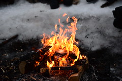 DAV_0449 Fuego (David Barrio López) Tags: fuego fire arbol tree pino siida sajos sami circulopolarartico arcticcircle holidayvillageinarihotel lomakyläinari reno reindeer poro nieve snow aurora boreal auroraboreal northernlights auroraborealis polarlights inari ivalo laponia lapland finlandia finland nikon d610 nikond610 fullframe nikkor2470mm 2470mm afsnikkor2470mmf28ged davidbarriolópez davidbarrio