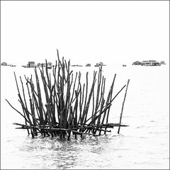 High key sur les rives du lac Tonlé Sap au Cambodge (Hervé Marchand) Tags: 2017 cambodge tonlésap highkey blackwhite noiretblanc lac village